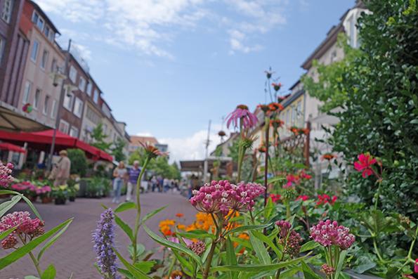 Marktansicht_Mit_Blumen