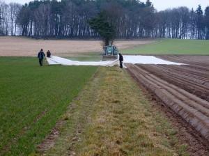 Mausbeck_Kartoffelpflanzung_10