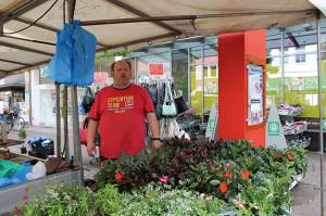Rainer Cordes hat viele Sommerblumen für Sie im Angebot.
